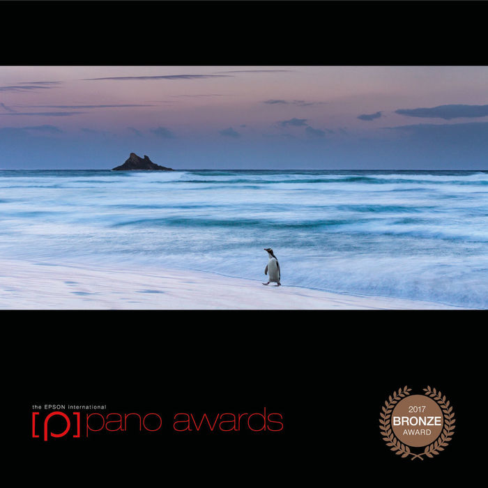Intenational Pano Awards Bronze 2017