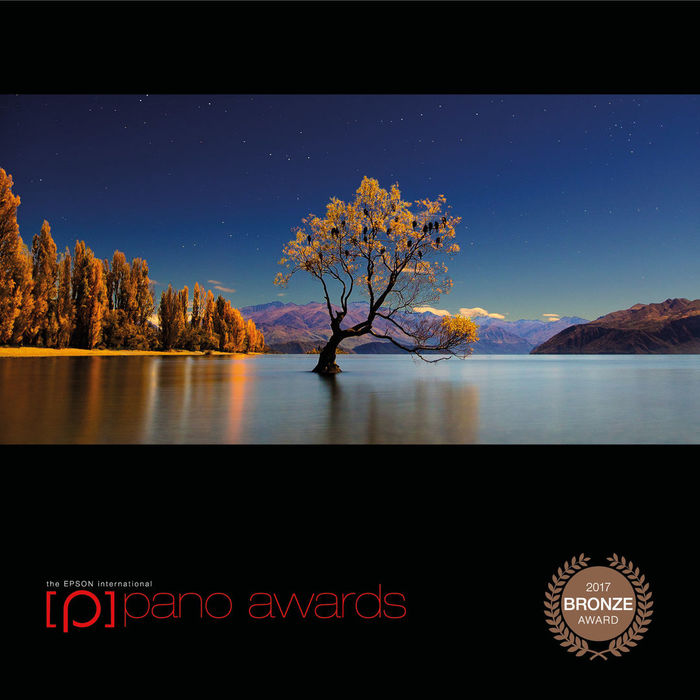 International Epson 2017 Pano Awards Bronze